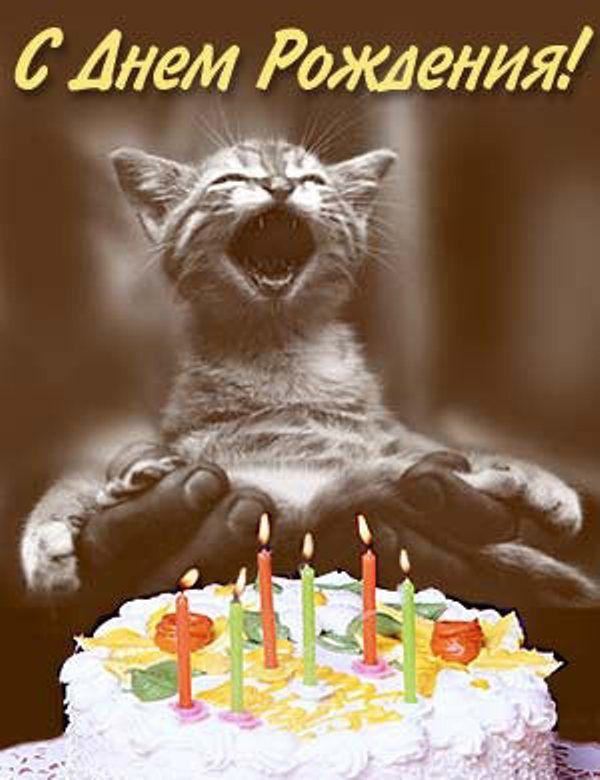 Поздравление с днем рождения риторика 35